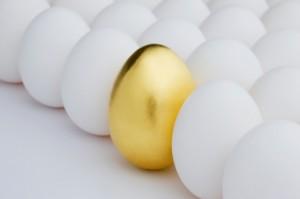 gold egg ראשי