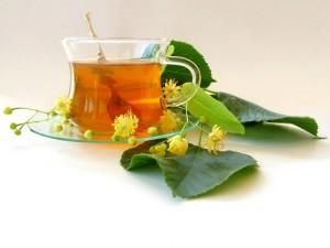 חליטות צמחי מרפא הן חלק מתזונה נכונה ואורח חיים בריא