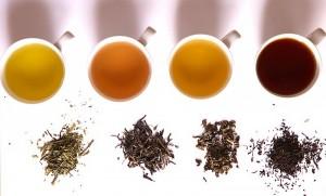 תה ירוק מעלה את חילוף החומרים.